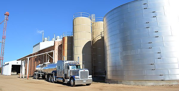 Feed plant manufacturing supplements.