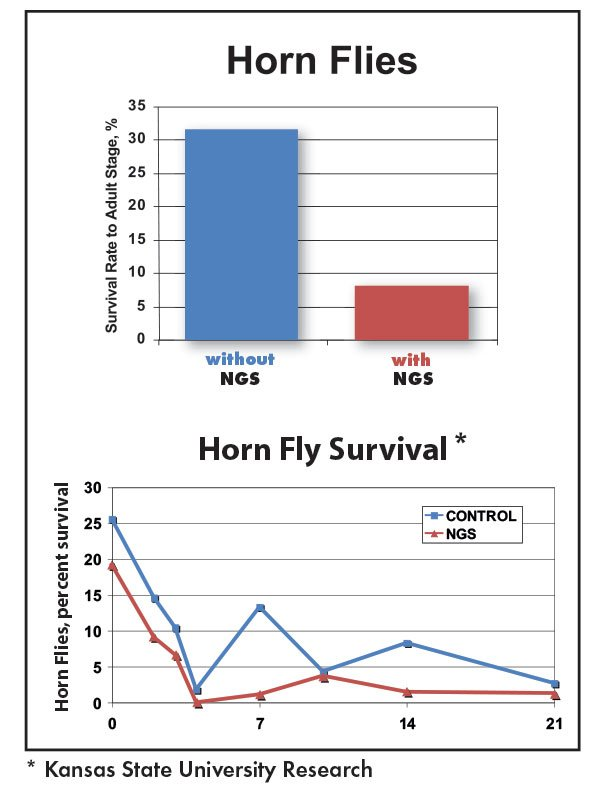NGS Fly Control Horn Flies